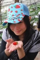 Cherrytomato