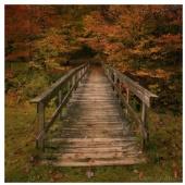 DennisChunga - Welcome To Autumn