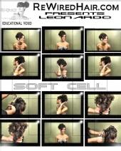 Leonardo Professionnel