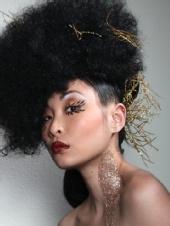 Shakira Clark - Golden Flare Hair By Shakira C