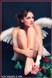 DaisyAnnDover - Fallen Angel
