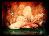 christina pardo - sleeping fairy