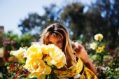 Micah Ellis - Yellow Flowers