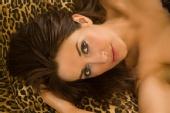 Kay Leigh - Leopard