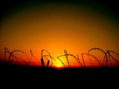 Steve - Middle East Sunset