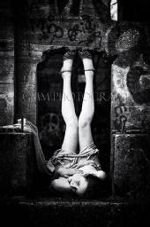 GMM Photography - Harmony Sage