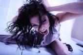 Freddy Fox Photography