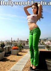 Hollywood Erotica - Domo